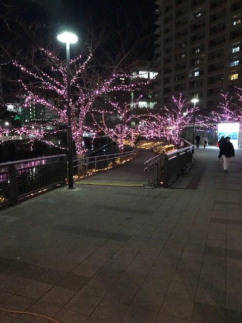 目黒川イルミネーション1
